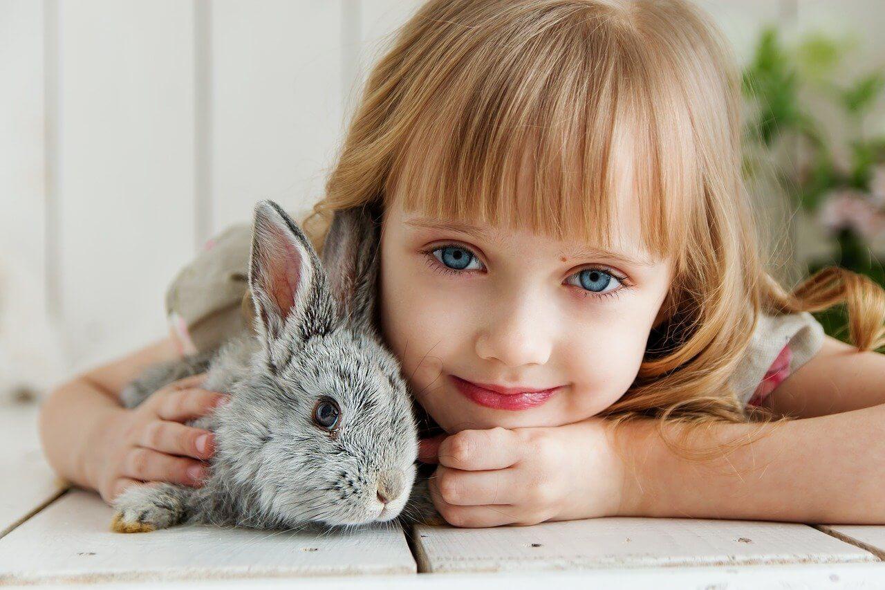 حقائق ممتعة عن الأرنب